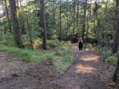 Trail at Loblolly Pines image